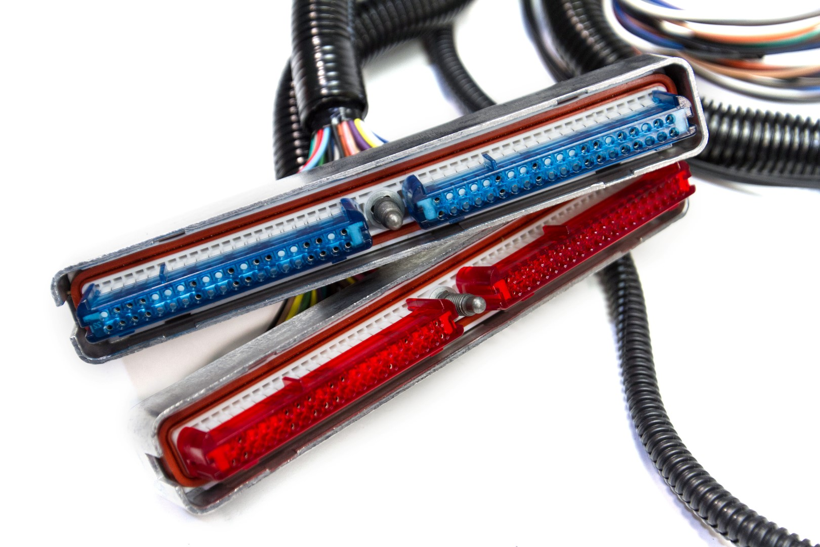 U0026 39 06  Ls3 W  T56  Tr6060 Standalone Wiring